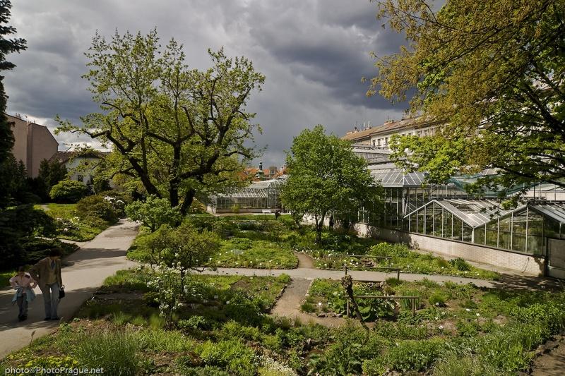 Le jardin botanique prague minos guide for Camping le jardin botanique limeray